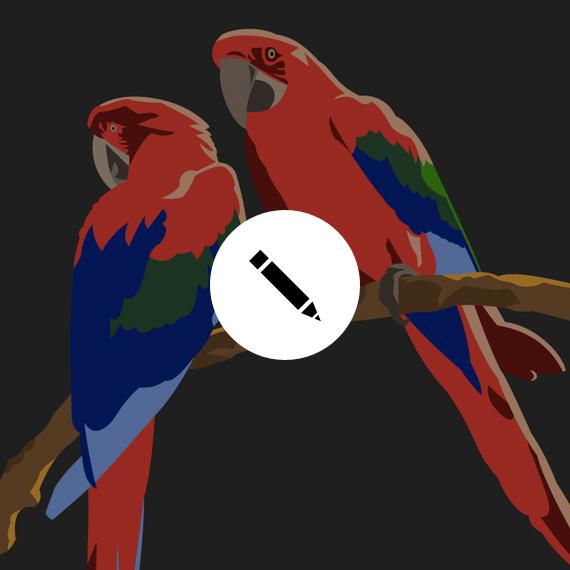 GRAPHISME Tee-Shirts «Birds»
