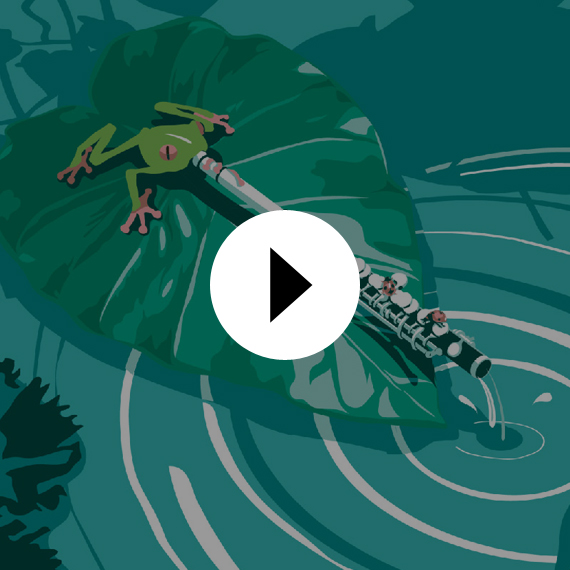 "<span style=""color: #ff7bac;"">MOTION DESIGN</span> <br /> Clip Iolead"