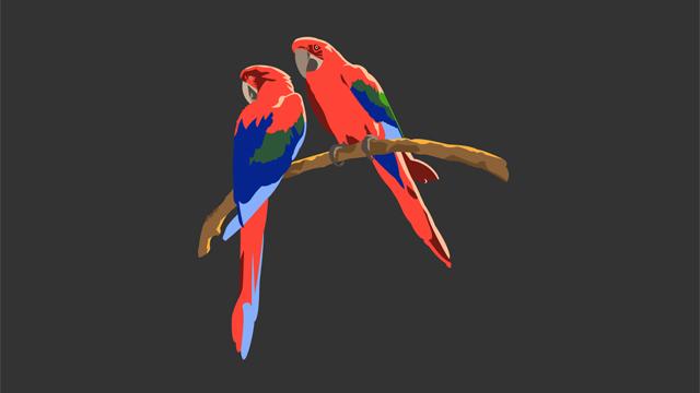teeshirt_birds2
