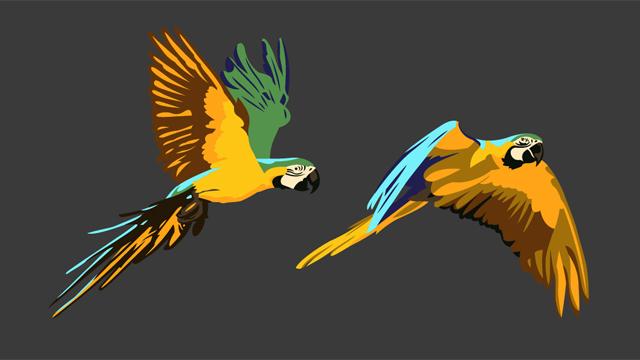 teeshirt_birds3
