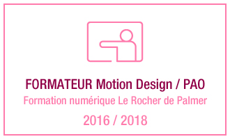 Vincent Leclerc, formateur Motion Design - PAO, formation numérique Le Rocher de Palmer, 2016 - 2018
